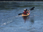 Kayaking Lehigh and Delaware Twin Rivers